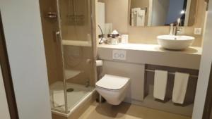 Hôtel de l'Aigle - Salle de bain- Batiment