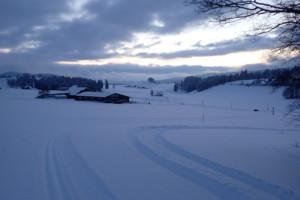 Traces de ski de fond, Val-de-Travers, hiver