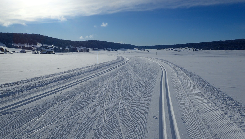 En Bus des neiges pour le dernier kilomètre !